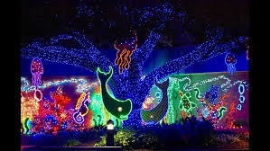 zoo lights houston prices khou com photos take a look at this year s houston zoo lights