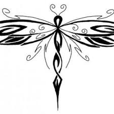 dragonfly meaning dragonfly s secret meaning