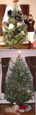 inspiration tree decor
