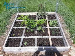 square foot garden spacing archives alberta gardener