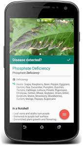 Plant Disease Diagnosis - plantix smart crop assistant