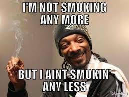 Happy Weekend Meme - happy weekend everyone happy cats smoke vape facebook