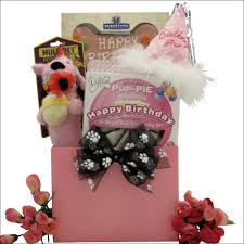 Pet Gift Baskets Happy Birthday Darling Pet Dog Gift Basket Egift Baskets