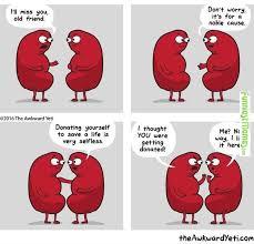 Memes Of Love - love memes dump album on imgur
