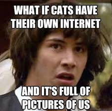 Meme With Own Picture - hilarious meme gallery conspiracy keanu
