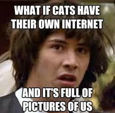 Meme Gallery - hilarious meme gallery conspiracy keanu