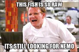Funny Chef Memes - gordon ramsay meme best of gordon ramsay angry chef meme