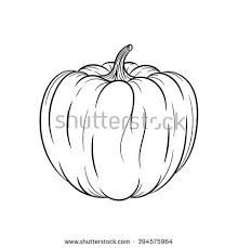 pumpkin vector drawing isolated hand drawn stock vector 463786439
