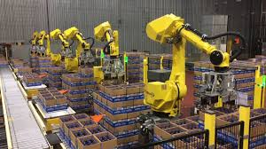 automated decasing system uses six fanuc robots to decase bottles
