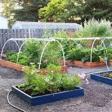 Ideas For Backyard Gardens Vegetable Garden Design Ideas Backyard And Photos