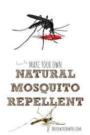 homemade mosquito repellent skip the deet and use this instead