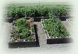 cinder block vegetable garden pictures to pin on pinterest