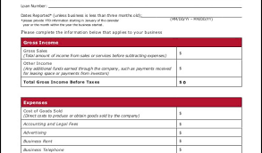 income and expenses template profit and loss balance sheet