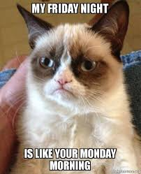 Friday Night Meme - my friday night is like your monday morning grumpy cat make a meme