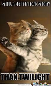 Cute Kitten Memes - cute kittens by prabhat meme center