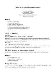 Sample Resume Website by Best 25 Web Designer Resume Ideas On Pinterest Portfolio