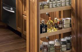 cabinet wonderful spice racks for cabinets tedd wood spice