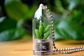 coral cactus terrarium necklace