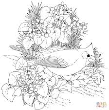 bird of paradise flower coloring page free printable coloring pages