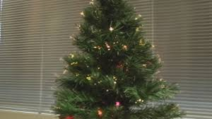 real christmas trees state officials encourage real christmas trees this year kokh