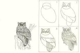 studentsdrawing animal step step easy outline drawing bird aanthai