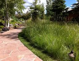 colorado landscaping pictures gallery landscaping network