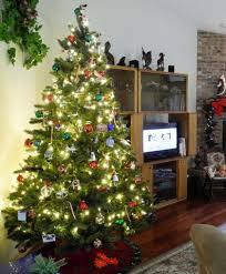 6ft christmas tree alberta spruce christmas tree tree classics