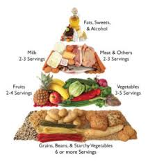healthy diet meal plans that works nutrition is 50 success tips