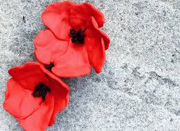poppies for remembrance tinselbox