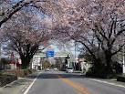 「太平山県立自然公園」の画像検索結果
