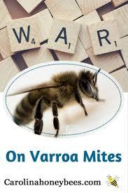 943 best beekeeping images on pinterest bee keeping honey bees