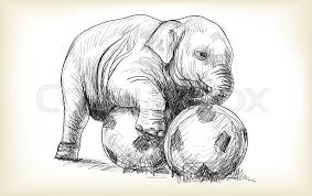 baby elephant playing football sketch and free hand draw