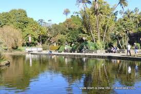 Botanical Garden Sydney by Royal Botanic Garden In Sydney