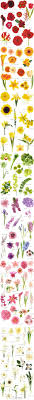 Different Types Of Gardens Types Of Garden Flowers Dunneiv Org