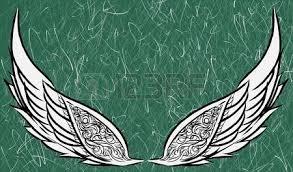 preliminary wings sketch version royalty free cliparts vectors