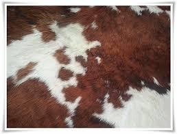 tappeto di mucca the orange deer la storia mio tappeto di pelle di mucca
