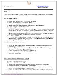 it resume service it resume format for experienced resume format
