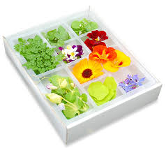 garnishes with edible flowers and herbs greens of