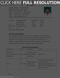 examples of best resume sample of best resume inspiration decoration ideas of sample of best resume for resume sample