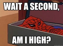 Wait A Second Meme - wait a second am i high spider meme am i high quickmeme