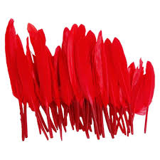 home decor red amazon com 50pcs home decor dark red goose feather arts crafts