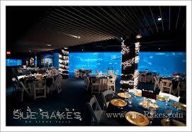Wedding Photographers Raleigh Nc Nc Aquarium Wedding On Emerald Isle Nc Raleigh Wedding