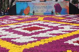Ottoman Tulip by The World U0027s Largest Colourful Tulip Carpet Is In Istanbul