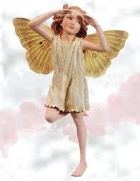 245 best flower fairies images on flower fairies