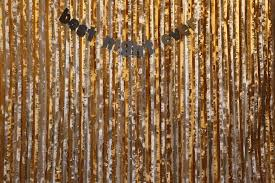 streamer backdrop party no 1 photo booth backdrop year of