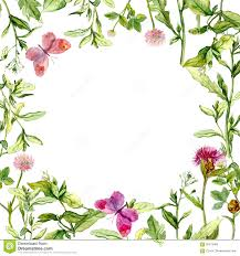 border frame with wild herbs meadow flowers and butterflies