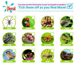 animal u0026 nature activities for kids persil