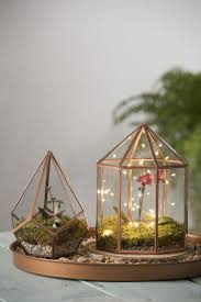 Livingroom Images 482 Best Fairy Garden Images On Pinterest