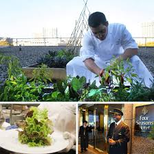 four seasons hotel adds new rooftop vegetable garden as a source