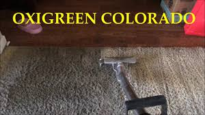 Professional Laminate Floor Cleaning Professional Carpet Cleaning Youtube